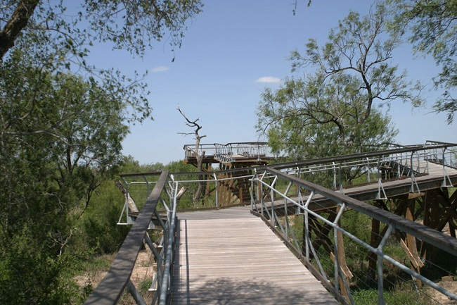 Bentsen-Rio Grande Valley State Park Trails
